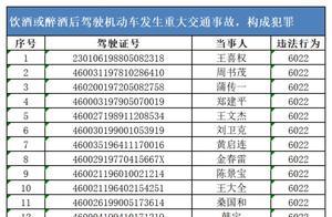 海南警方公布一批终生禁驾人员名单,共计255名