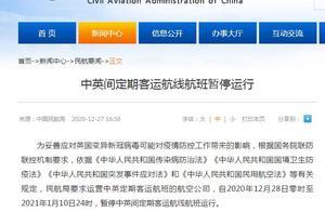 中国民航局:中英间定期客运航线航班暂停运行