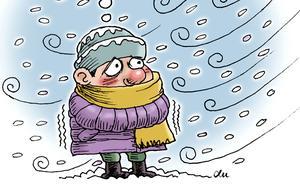 入冬最强寒潮来袭,裹上厚厚的羽绒服吧