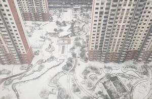 一觉醒来,菏泽今冬初雪来袭!一大波美图来了