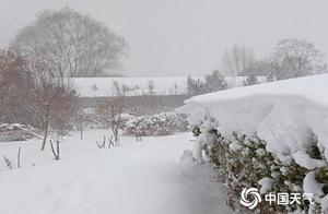 """今明天山东半岛局地仍有暴雪 新年第一天阳光将""""上线"""""""