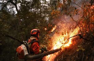 迪庆香格里拉发生森林火灾,目前正在紧急扑救中