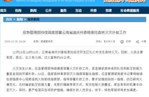 应急管理部:云南省迪庆州森林火灾过火面积约65公顷,已投入救援力量1161人