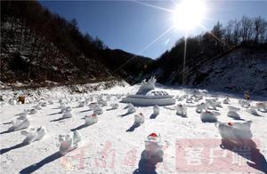 滑雪场员工雪地堆100雪牛拼《百牛送福》图迎2021新年