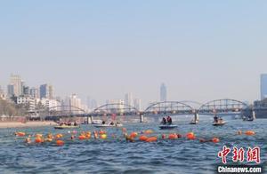 兰州黄河之滨 300余名冬泳健儿劈波斩浪
