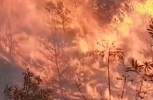 广东梅州梅县突发山火,浓烟滚滚遮天蔽日!网友:一定要注意安全