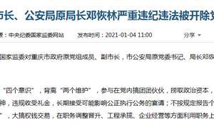 """搞权钱、权色交易!重庆市原副市长邓恢林被""""双开"""""""