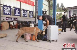 云南2020年缴毒35.4吨 占全国近半