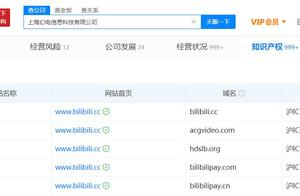 "B站关联公司完成""bilibilipay.com""等域名备案"