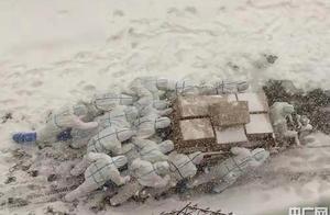 大连海洋大学师生志愿者雪中逆风前行送防疫物资刷屏网络