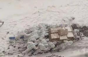 """被赞雪中的""""移动雕塑""""大连海洋大学师生志愿者冒雪送防疫物资"""