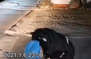 援石护士工作中突闻母亲去世,她向家的方向三鞠躬但留守一线