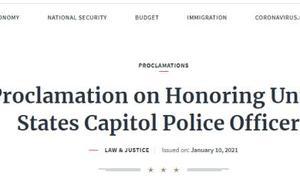 特朗普下令:美国降半旗悼念在国会大厦遭冲击事件中死亡的两名警察