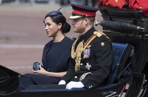 """英国哈里王子夫妇退出社交媒体 英媒:对那些""""仇恨""""言论感到""""失望"""""""