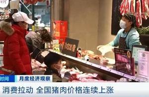 消费拉动 全国猪肉价格连续上涨