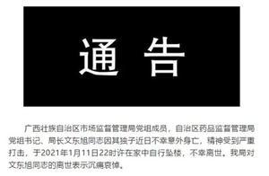 广西药监局局长文东旭坠楼离世