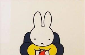 """广美教授回应被指抄袭米菲兔:不认同 所有公共符号都是艺术家创作的""""词语"""""""