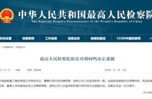 刚刚!原中国船舶重工集团董事长胡问鸣、青海省原副省长文国栋被决定逮捕