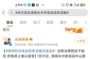正在整治!官方回应湖南永州市场卖现宰活猫