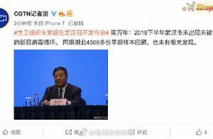 世卫组织专家组召开发布会,梁万年:2019下半年武汉未现未识别新冠病毒循环