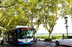 灵隐祈福后再去西溪探梅,假期最后一天不如就在杭州坐公交到处逛逛