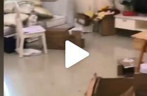 房东否认李湘方主动打扫后退租:强烈要求下才简单清理