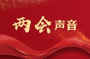 全国人大代表陈坤:建议加强对男性主体的反家暴宣传