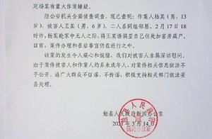 陕西6岁男童遭13岁少年杀害,官方深夜通报:两人系邻居