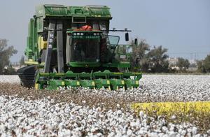 无处不在的新疆棉!新疆半年拿出近300万吨棉花战疫