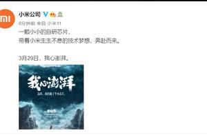 每经11点丨在校外培训机构违规兼职取酬,北京5名教师被通报;小米将在3月29日推出新款自研芯片;北向资金净买入40亿元
