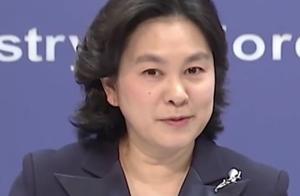 华春莹被BBC记者自动对号入座逗笑:改天我请你喝茶,慢慢聊