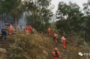 海丰公安依法查处3起山火案件