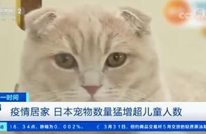 疫情居家,日本宠物数量已超儿童人数!日媒呼吁:希望能善始善终