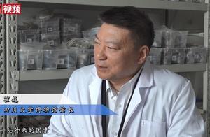 """专家称考古实证三星堆是华夏文明:""""外星文明""""简直是无稽之谈"""