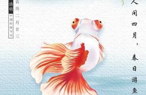 国潮金鱼×清明:金鱼人生怎么跟孩子谈论死亡?