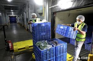 北京下月起买冷链食品可查来源?无追溯数据不得销售