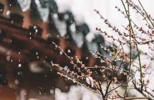如果下雪,西安就成了长安,北京就成了北平,南京就成了金陵
