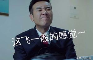 巡回检察组43集大结局:冯森攻破最难一关,米振东黄雨虹伏法