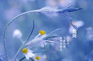 二十四节气之霜降 霜降节气的传统习俗、饮食养生、农事知识