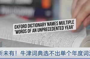 2020年度词汇,牛津词典表示一个不行,要一组才行