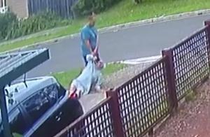 澳大利亚男子将70岁继父拖上路,挥重拳殴打,后开车撞出三四米