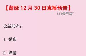 薇娅直播预告12月30号清单