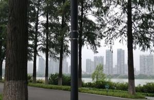 武汉东湖风景区景色美不胜收,夕阳西下绿道漫步心旷神怡