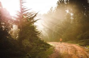陈坤分享晨跑暖心经历:坚持晨跑,你的人生会发生哪些美好?
