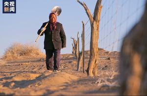 你在网上种的梭梭树,他在戈壁沙漠种了18年