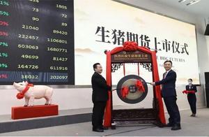 生猪期货来了!上市首日跌幅超12%,投资者坚信猪肉价格会跌,交易所: