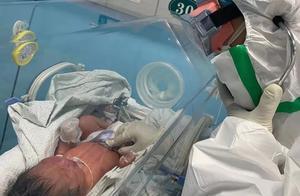 出生30小时婴儿确诊感染新型冠状病毒!专家:可能存在母婴垂直传播