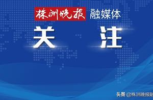 """降低医用耗材价格为群众减负,湖南省三类产品明确""""团购""""规则"""
