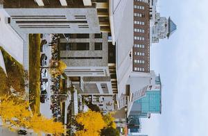 北京大学的秋天,横着看,很好看……(多图)