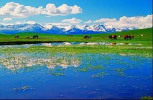 心花开在美丽的草原上